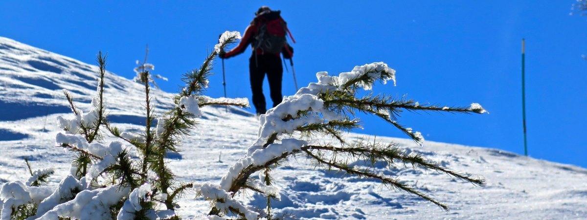 Prime nevi in montagna